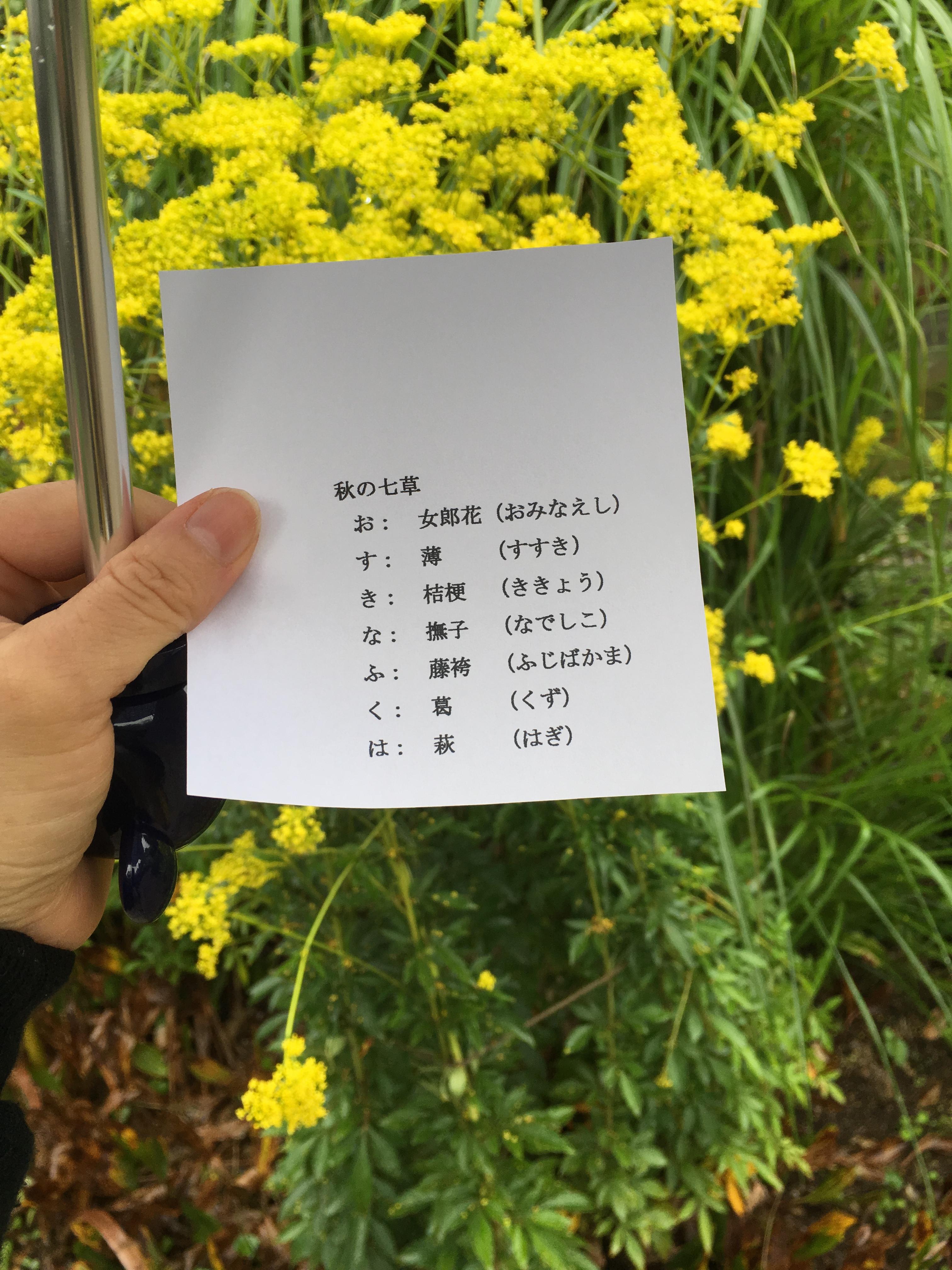 ファイル 58-5.jpg